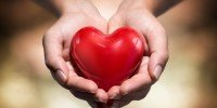 Каталог > Здоровое сердце