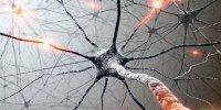 Тест состояния нервной системы